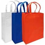 Bolsa Eco Conference Bag
