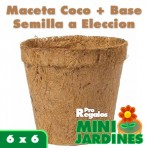 Minijardin Ecologico Coco Peque�o