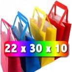 Bolsa Color 22x30x10